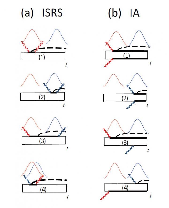 Quantum Interferometry Reveals How Coherent Phonons Are