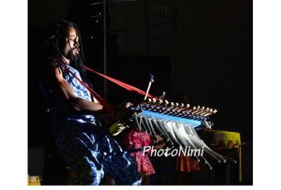 xylophonist, photonimi