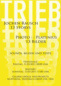 Flyer Ausstellung TRIEB / 13 Bilder, März 2011, pass:projects, wuppertal