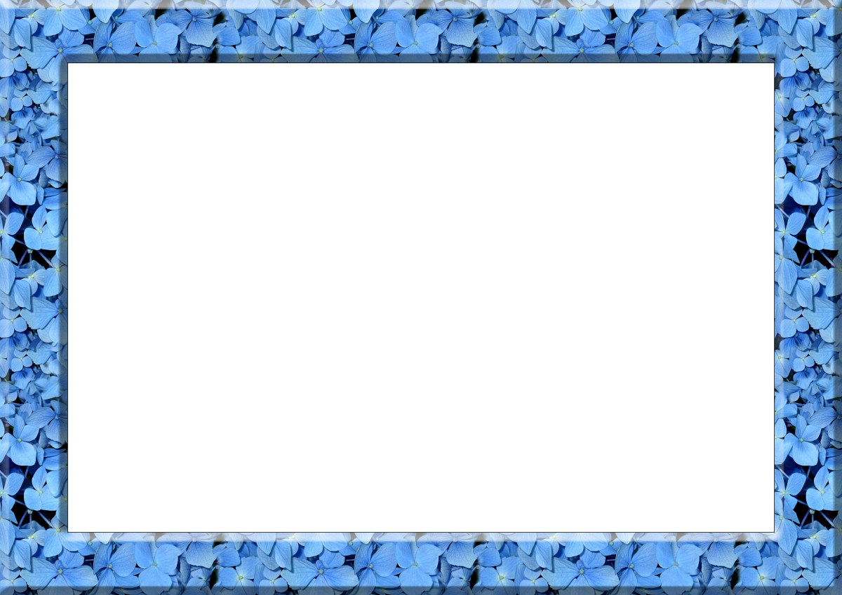 Flower frame border blue flowers