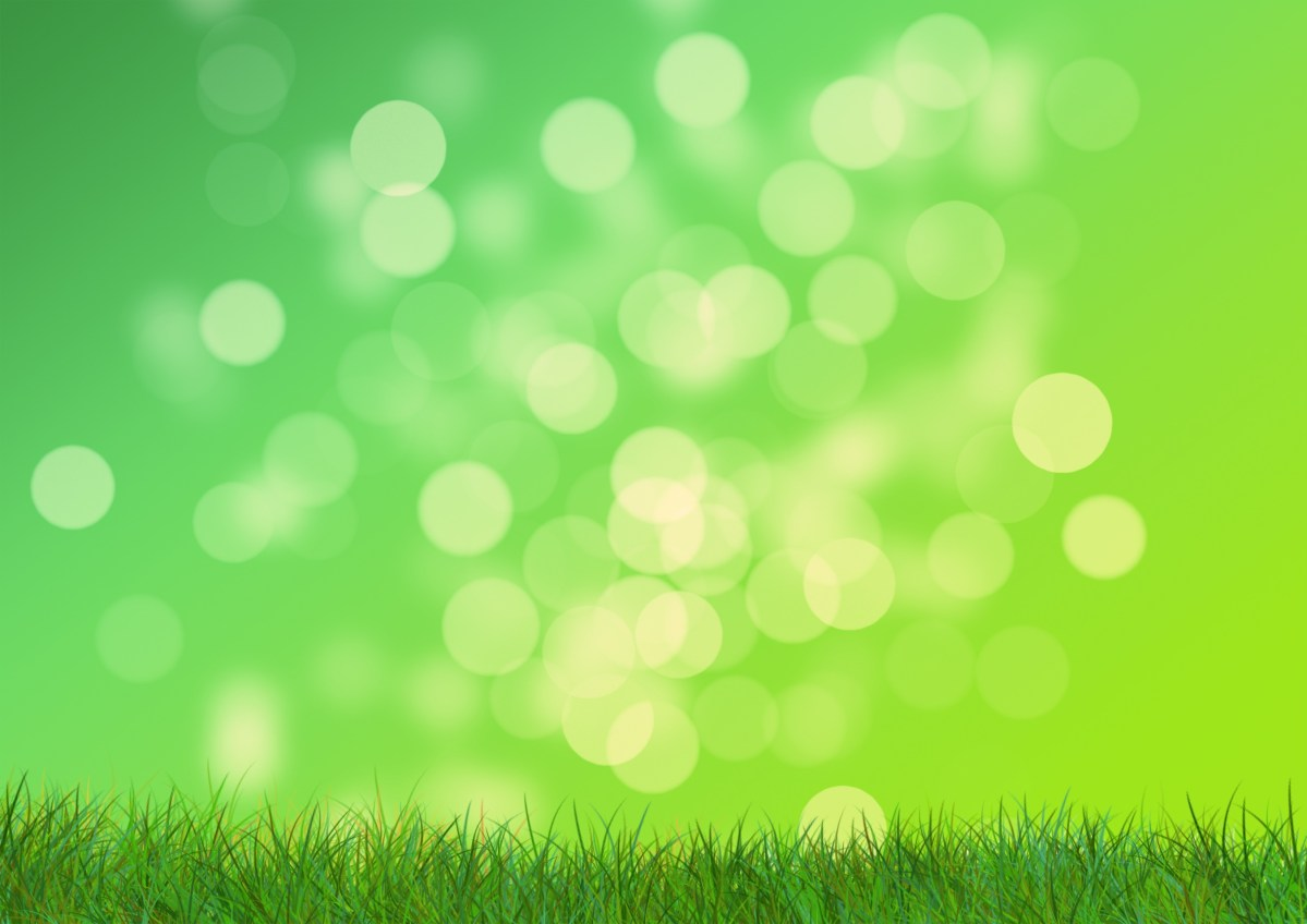 Grass abstract green backround