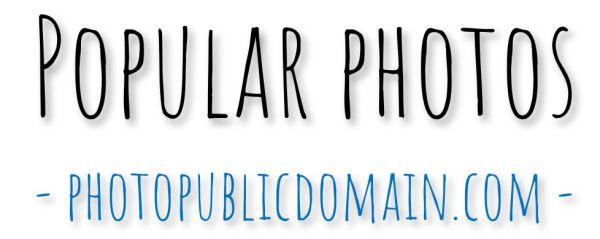 Popular photos in the public domain
