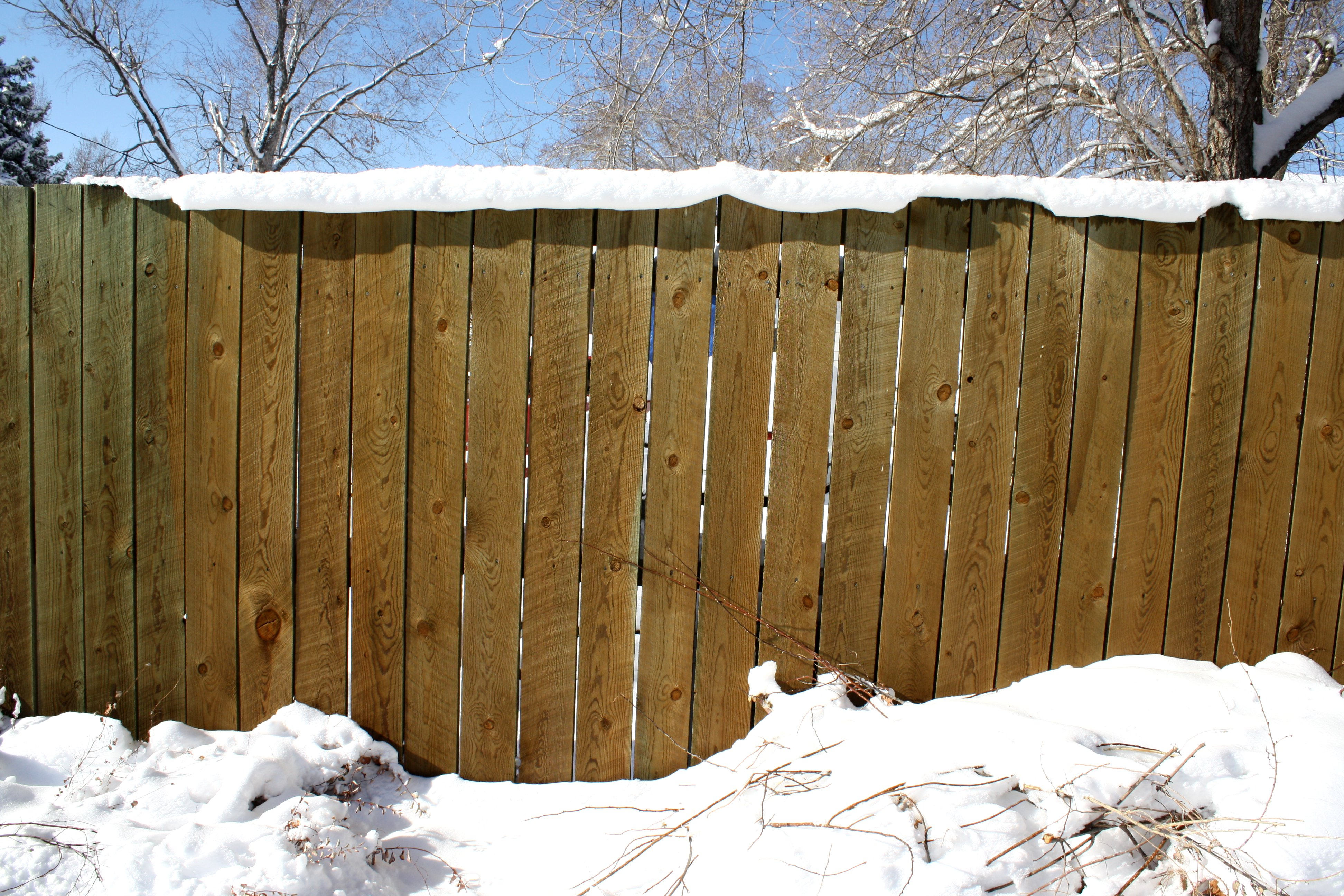 snow topped fence picture