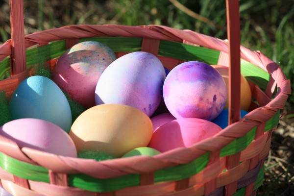 Colored Eggs in Easter Basket - Free High Resolution Photo