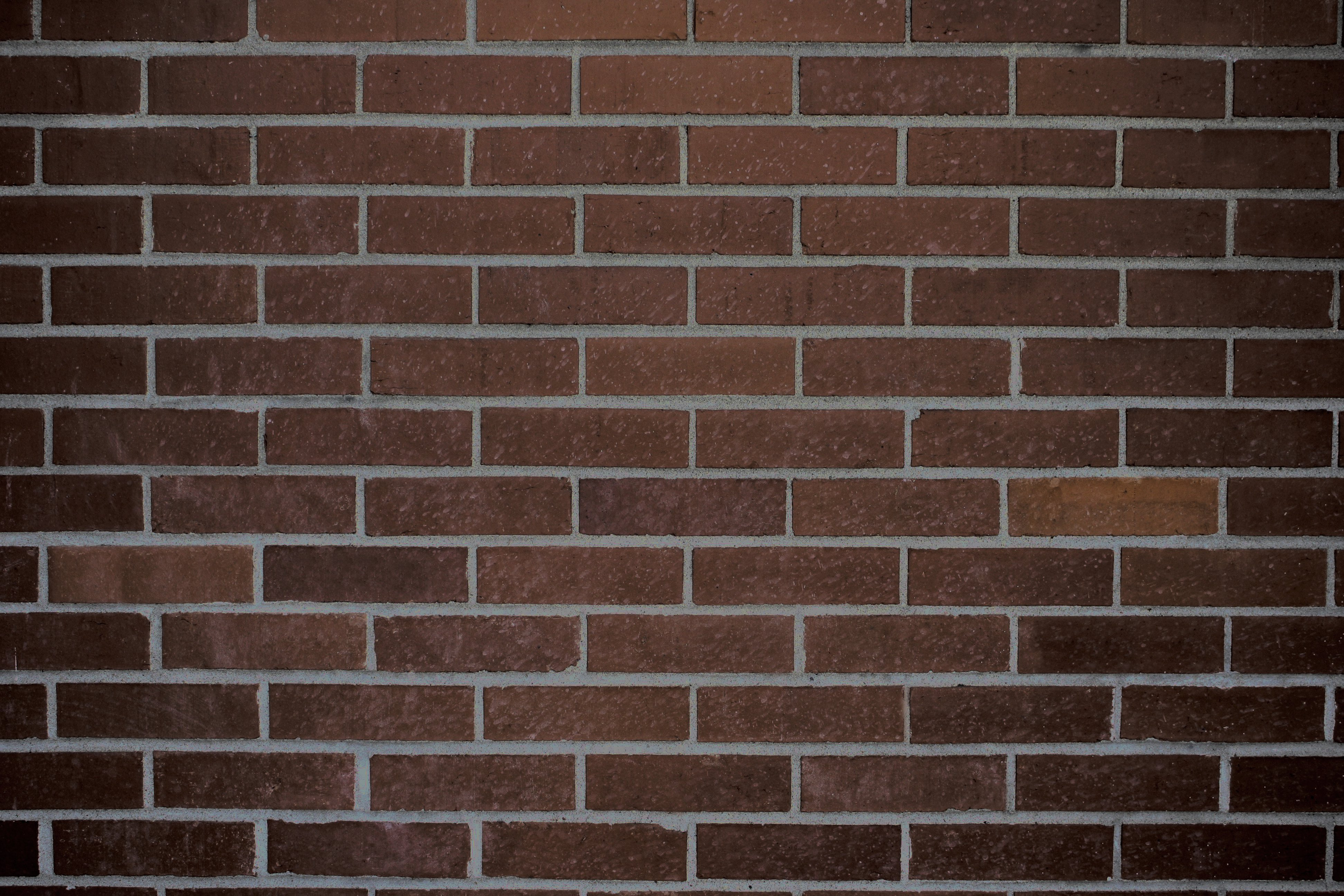 Dark Brown Brick Wall Texture Picture