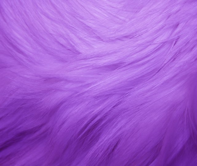 Purple Fur Texture