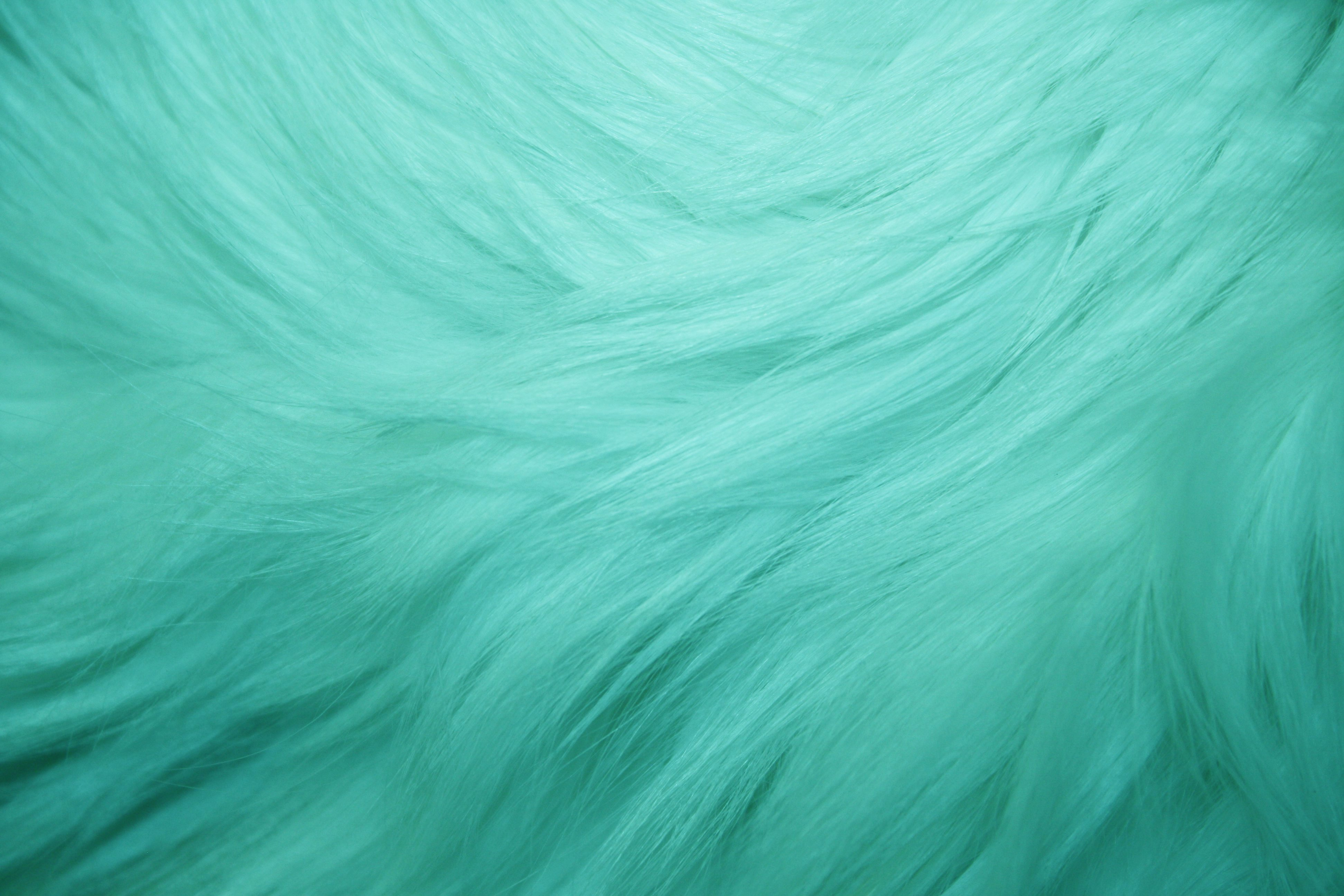 teal fur texture picture
