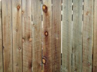 Wood Fence Boards Texture  Photos Public Domain