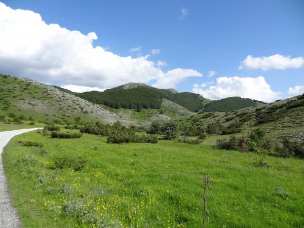 Mount Bistra (Macedonia)