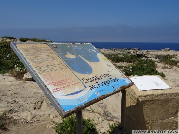 Timsah kaya ve Mantar kaya bilgi panosu (Gozo, Malta)