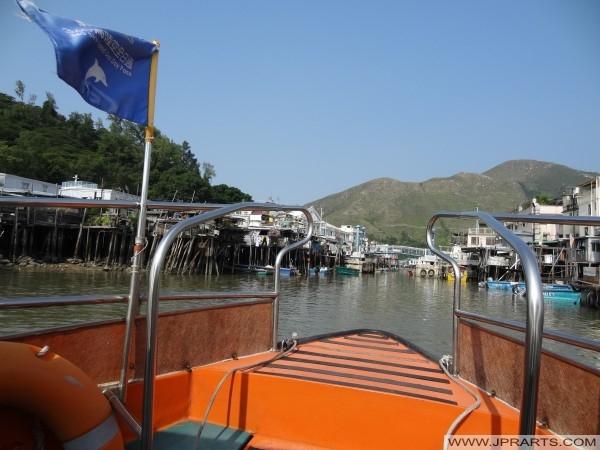 Powraca wycieczkę łodzią w Tai O po podróży, aby zobaczyć słynne różowe delfiny