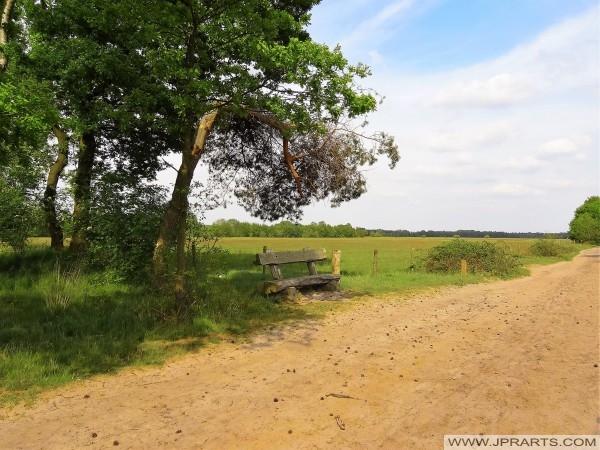Ruiterpad in Het Merkske (Belgisch - Nederlandse grens)