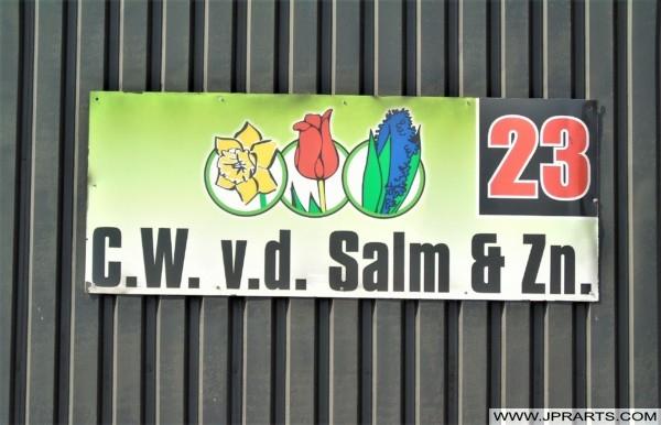 Flower Farm C.W. v.d. Salm & Zn. (Lisse, Holland)