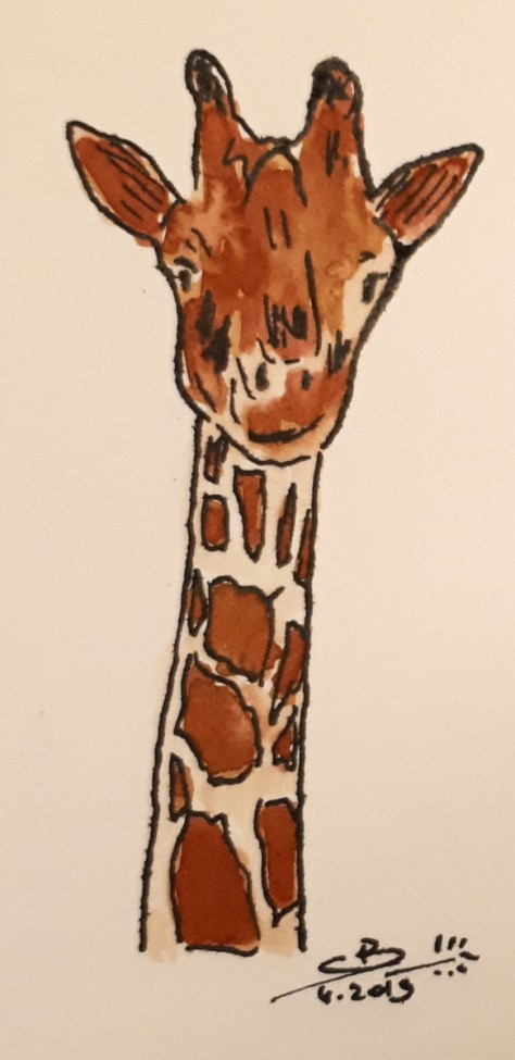 Encre de chine et aquarelle, girafe