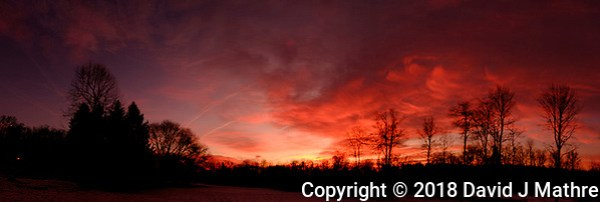 Dawn Morning Clouds. Winter Backyard Nature in New Jersey. In-camera (jpg) panorama taken with a Fuji X-T1 camera and 16 mm f/1.4 lens (ISO 200, 16 mm, f/5.6, 1/60 sec). (David J Mathre)