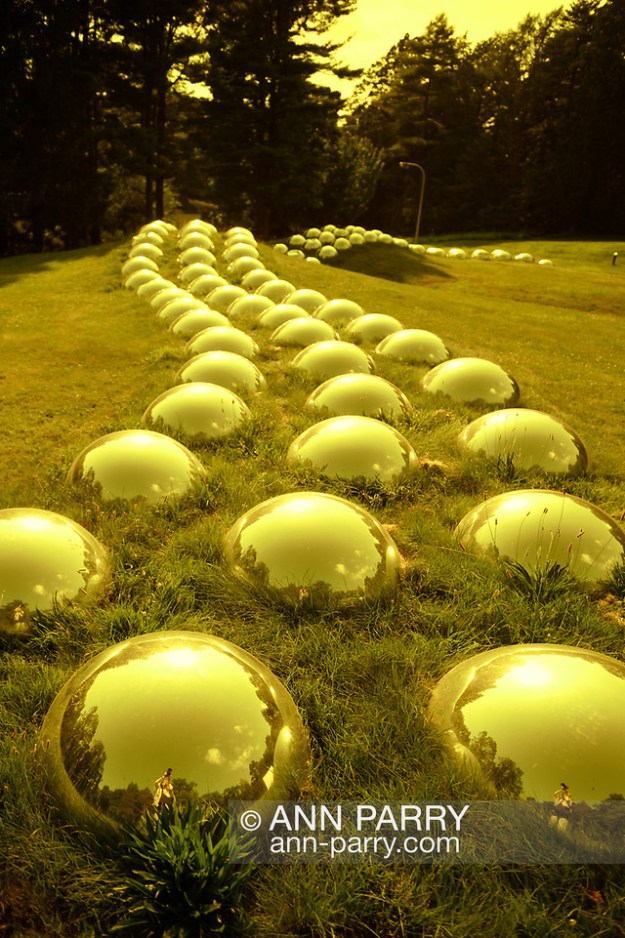 """Roslyn, New York, U.S. July 7, 2019. [NOTE: YELLOW filter added to image] """"Vertebrate Progression (Field Totem)"""" outdoor sculpture of domed mirrors was created and installed by artist Marko Remec near the Manes Center at the Nassau County Museum of Art, which commissioned the work. (© 2019 Ann Parry/Ann-Parry.com)"""