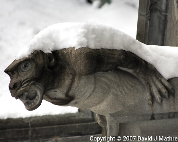 Gargoyles Outside Nidaros Cathedral in Trondheim, Norway. Image taken with a Nikon D2xs and 80-400 mm VR lens (ISO 400, 400 mm, f/5.6, 1/160 sec) (David J Mathre)