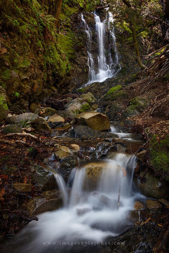 Uvas Canyon, California (Kyle Jones)