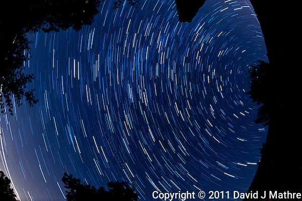 North View Star Trails. Summer Night in New Jersey. Image taken with a Nikon D3s and 16 mm f/2.8 mm Fisheye lens (ISO 400, 16 mm, f/4, 59 sec). Composite of 30 images combined using the Startrails program. (David J Mathre)