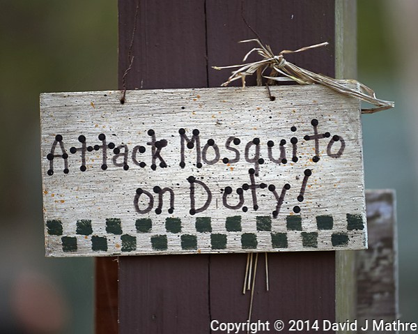 """""""Attack Mosquito on Duty"""" sign at Clyde Butchers Swamp Cottage. Big Cypress Swamp in Florida. Image taken with a Nikon Df camera and 70-200 mm f/4 VR lens (ISO 800, 200 mm, f/4, 1/200 sec). (David J Mathre)"""