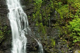 An un-named waterfall drops down a cliff coverred in moss, Boulder River Wilderness, Mount Baker-Snoqualmie National Forest, Washington, USA