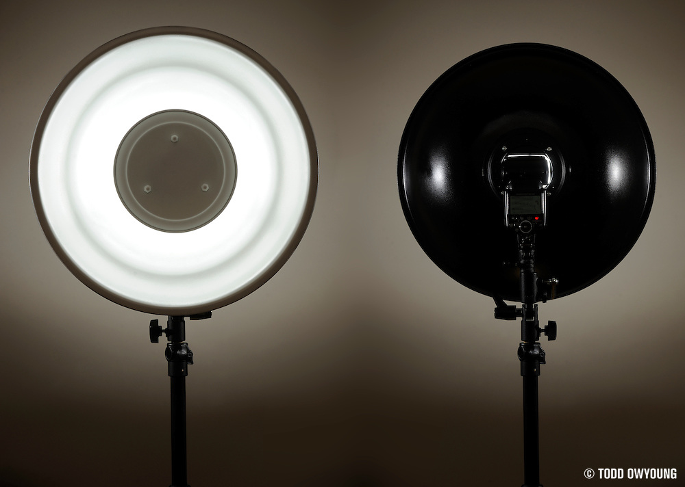 Impact Honeycomb Grid for 20 Beauty Dish Reflector 4 Pack