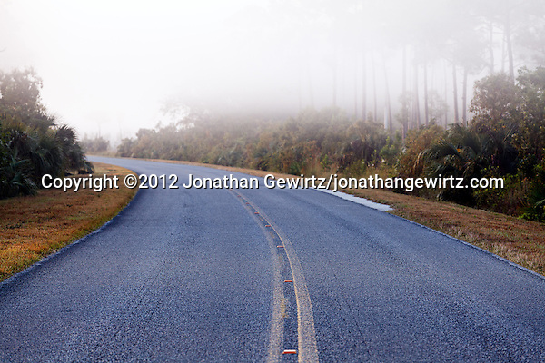 A paved road curves into the distance on a foggy morning in Everglades National Park, Florida. (© 2012 Jonathan Gewirtz / jonathan@gewirtz.net)