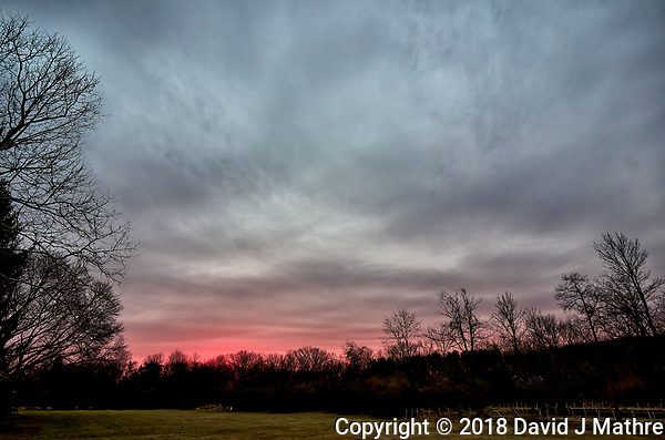 Backyard Winter Dawn Sky in New Jersey. Image taken with a Leica T camera and 11-23 mm lens (ISO 200, 11 mm, f/4, 1/40 sec). Raw images processed with Capture One Pro. (David J Mathre)