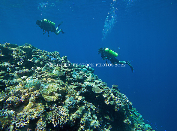 Two Scuba divers explore Mermaid Reef at the Rowley Shoals. (Annabelle Sandes/© Annabelle Sandes | Kimberley Media 2010)