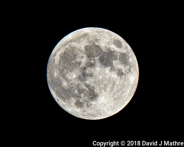 Full (Blue, Super) Moon at Midnight. Winter Night Sky in New Jersey. Image taken with a Fuji X-T2 camera and 100-400 mm OIS lens (ISO 200, 400 mm, f/18, 1/250 sec). (David J Mathre)
