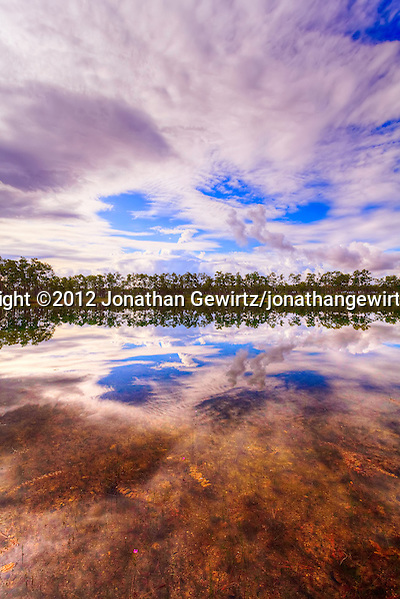 Early-morning view of the lake and rainy-season sky reflections at the Long Pine Key campground in Everglades National Park, Florida. (© 2012 Jonathan Gewirtz / jonathan@gewirtz.net)