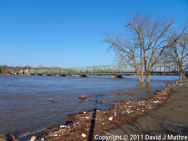 Delaware River -- Flood Stage. Lambertville and New Hope Bridge from the Lambertville Inn Parking Lot. Image taken with a Leica D-Lux 5 (ISO 100, 5.1 mm, f/4, 1/1000 sec). (David J Mathre)