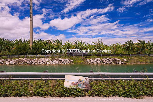 A nautical-themed painting lies discarded along a South Florida canal. (© 2013 Jonathan Gewirtz / jonathan@gewirtz.net)