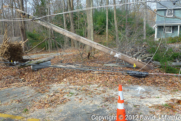 Post Hurricane Sandy. Image taken with a Leica V-Lux 30 camera (David J Mathre)