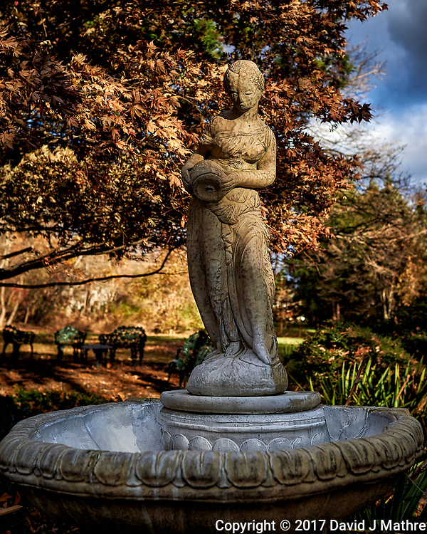 Newly Renovated Bird Bath and Stature. Autumn Backyard Nature in New Jersey. Image taken with a Nikon Df camera and 28 mm f/1.8 lens (ISO 100, 28 mm, f/4, 1/400 sed) (David J Mathre)