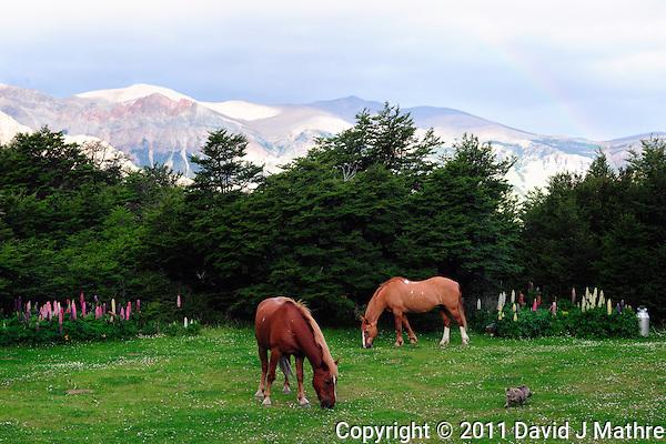 Rainbow and Horses at Hosteria El Pilar (David J Mathre)