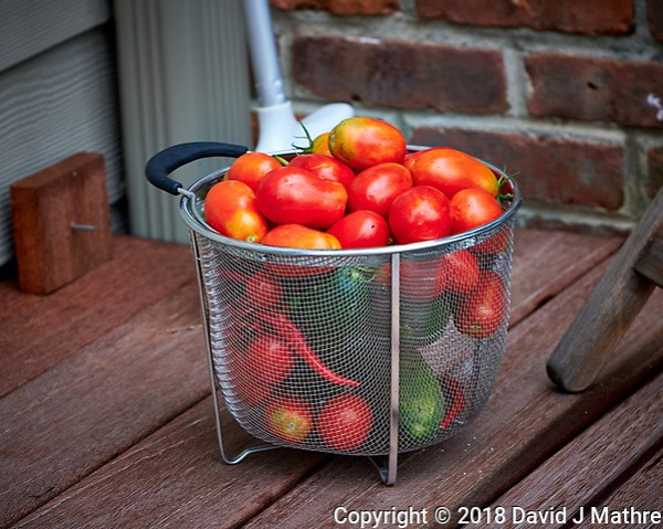 Garden Tower Harvest (Tomatoes, Cucumbers, Hot Peppers). Image taken with a Fuji X-H1 camera and 80 mm f/2.8 macro lens. (DAVID J MATHRE)