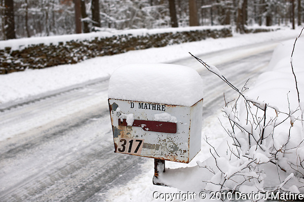 Winter in New Jersey (David J Mathre)