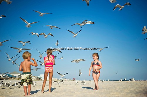 Children feed sea gulls on the beach. (Beth Hall)