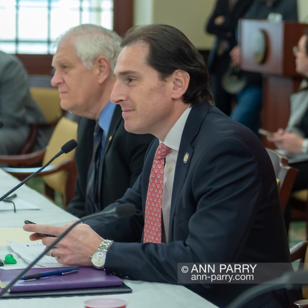 Mineola, NY, USA. 15th Feb, 2019. At right, NYS Senator TODD KAMINSKY, and, at left, NYS Assemblyman STEVE ENGLEBRIGHT, listen to speaker during NYS Senate Public Hearing on Climate, Community & Protection Act, Bill S7253, sponsored by Sen. Kaminsky. (© 2019 Ann Parry/Ann-Parry.com)