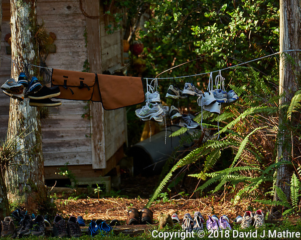 Tennis shoes and waders drying at Clyde Butcher's Retreat. Winter Nature in Florida Image taken with a Fuji X-T2 camera and 100-400 mm OIS telephoto zoom lens (David J Mathre)
