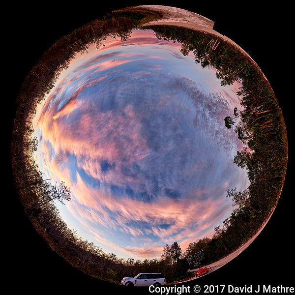 Inverse Little-Planet View of Colorful Dawn Clouds. Begining of the Loop road through Big Cypress National Preserve. Winter Nature in Florida Composite of 21 mages taken with a Fuji X-T1 camera and 16 mm f/1.4 lens (ISO 200, 16 mm, f/5.6, 1/30 sec). Raw images processed with Capture One Pro, and the composite generated using AutoPano Giga Pro. (David J Mathre)