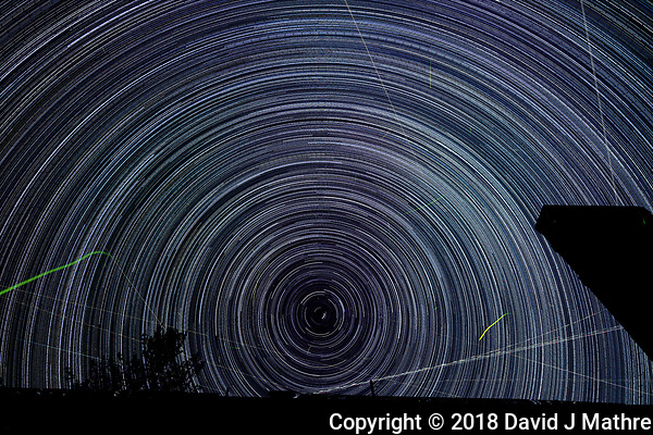 Startrail Looking North. Composite of images (22:20-03:19) taken with a Nikon D850 camera and 19 mm f/4 PC-E lens (ISO 200, 19 mm, f/4, 30 sec). Raw images processed with Capture One Pro and the composite created using Photoshop CC (scripts, statistics, maximum). (DAVID J MATHRE)