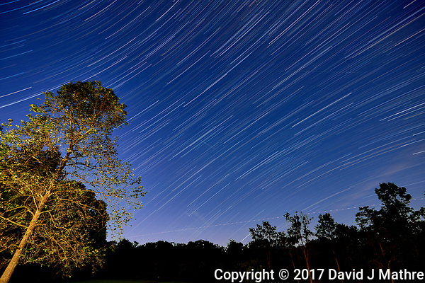 Startrails looking southeast. Backyard night sky in New Jersey. Composite of 30 images taken with a Nikon D810a camera and 16-35 mm f/4 lens (ISO 200, 16 mm, f/4, 120 sec). (David J Mathre)