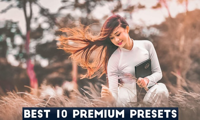 Camera Raw Presets Free Download - Best 10 Premium Presets