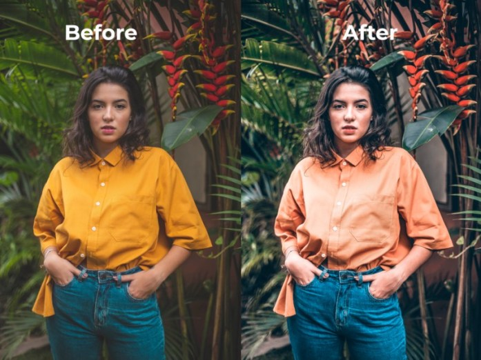 Pro Portrait Free Photoshop Action