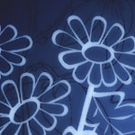 Flores cepillos