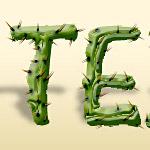 Cactus text