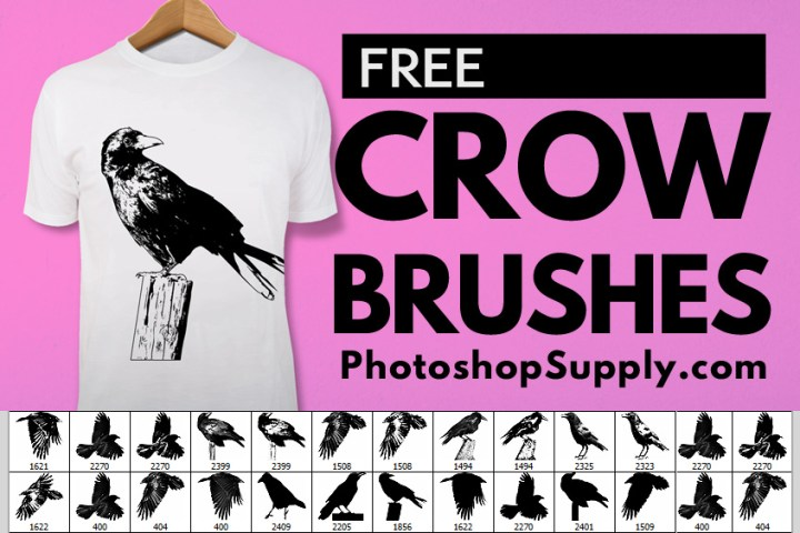 Crow Brushes
