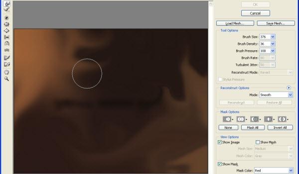 3 Liquify tool settings